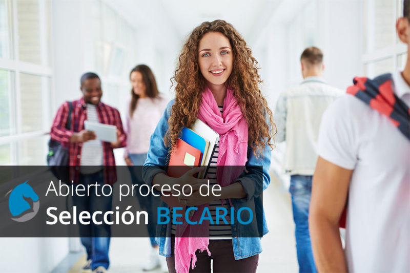 seleccion becario - agencia inbound marketing