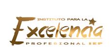 premio excelencia agencia posicionamiento web en madrid