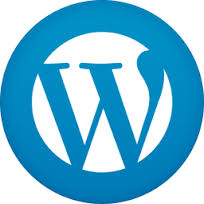 agencia de marketing online madrid wordpress