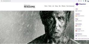 Diseño de páginas web WordPress para famosos
