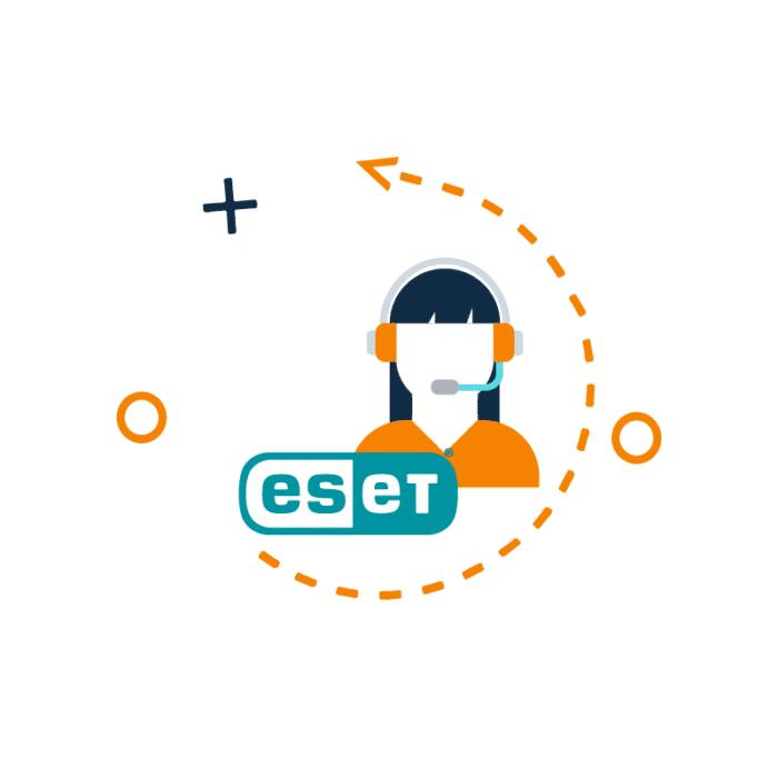 Consultoria de Seguridad empresarial Eset (1er servicio UE)